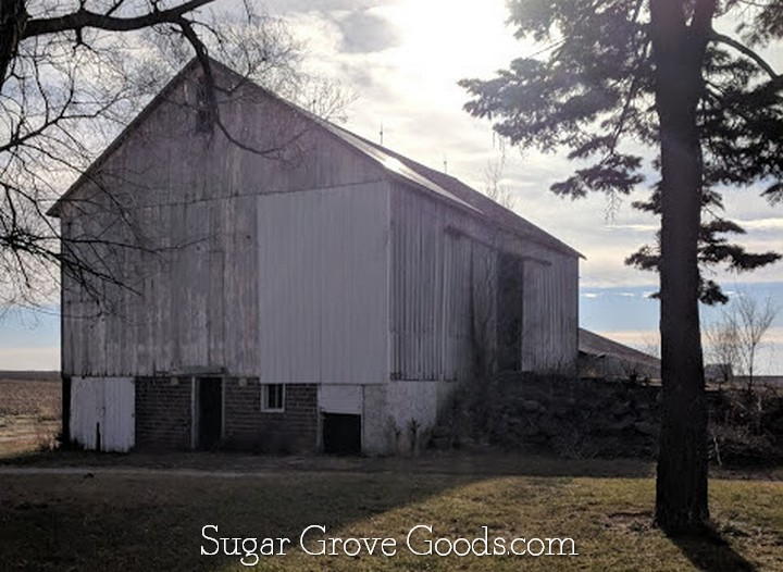 One of the most unique features of our Iowa homestead is our bank barn which was built in 1900. These types of barns are not common in Iowa and are becoming even more rare as they age